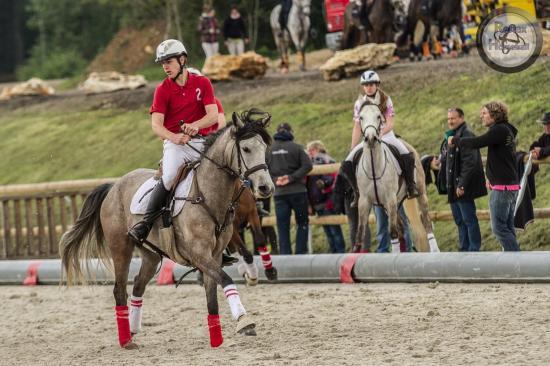 Basanti horse ball 4